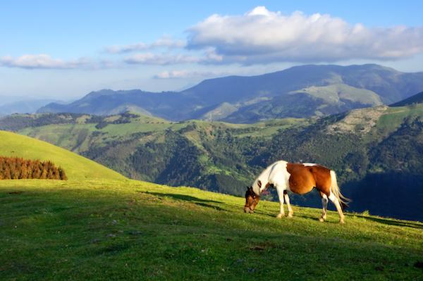 País Vasco © Mimadeo - Shutterstock